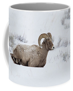 Coffee Mug featuring the photograph Slow Go by Ronnie and Frances Howard