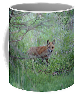 Sly Coffee Mug
