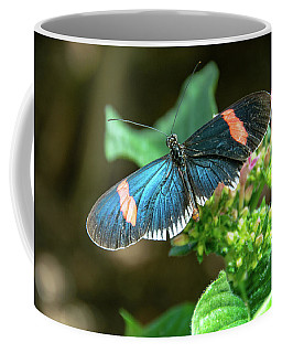 Small Black Postman Butterfly Coffee Mug