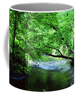 Coffee Mug featuring the photograph Small Creek by Gary Wonning