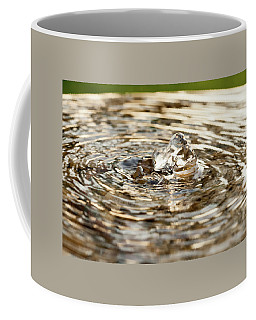 Small Fountain In A Garden Coffee Mug