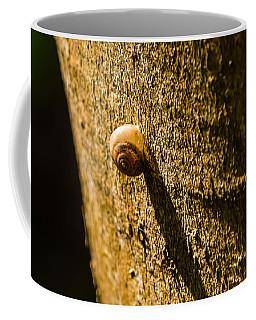 Small Snail On The Tree Coffee Mug