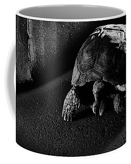 Coffee Mug featuring the photograph Small Turtle Exploring The Surroundings by Eduardo Jose Accorinti