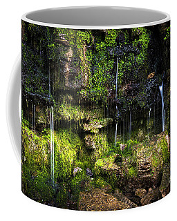 Coffee Mug featuring the photograph Small Waterfall by Elena Elisseeva