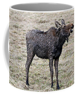 Smiling Moose Coffee Mug by Scott Mahon