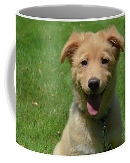 Smiling Nova Scotia Duck Tolling Retriever Puppy On A Summer Day Coffee Mug by DejaVu Designs