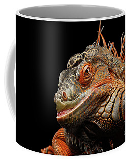smiling Orange iguana isolated on black  Coffee Mug