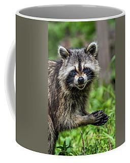 Smiling Raccoon Coffee Mug