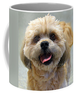 Smiling Shih Tzu Dog Coffee Mug by Catherine Sherman