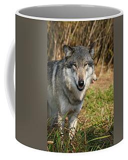 Smiling Wolf Coffee Mug