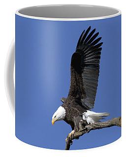 Smooth Landing 2 Coffee Mug