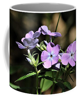 Coffee Mug featuring the photograph Smooth Phlox Wildflowers by Sheila Brown