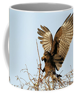 Snail Kite Coming In Coffee Mug