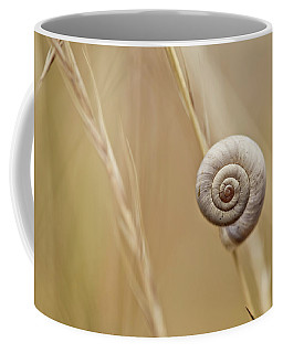 Snail On Autum Grass Blade Coffee Mug