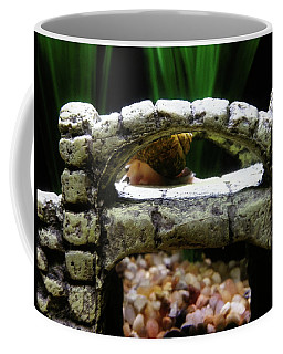 Coffee Mug featuring the photograph Snail Over A Bridge by Robert Knight