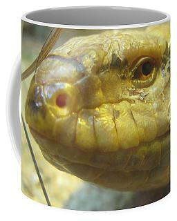 Snake Eye Coffee Mug