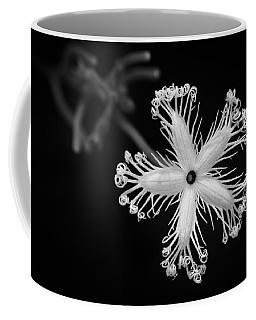 Snake Gourd Flower Coffee Mug