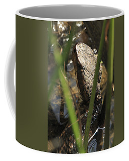 Snake In The Water Coffee Mug