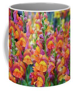 Snapdragon Rainbow Coffee Mug