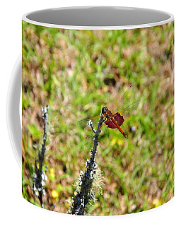 Coffee Mug featuring the photograph Shimmering Saddlebags by Al Powell Photography USA