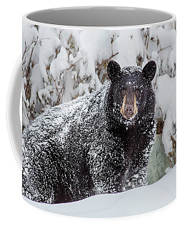 Snow Bear Stare Coffee Mug