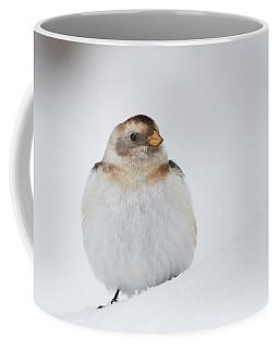 Coffee Mug featuring the photograph Snow Bunting - Scottish Highlands by Karen Van Der Zijden