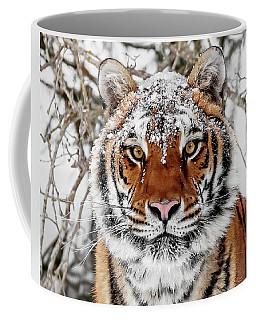 Snow Capped Siberian Coffee Mug