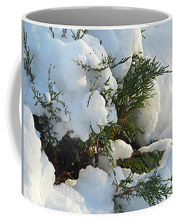 Coffee Mug featuring the photograph Snow Covered Evergreen by Rockin Docks Deluxephotos