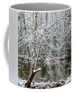 Coffee Mug featuring the photograph Snow Cranberry River by Thomas R Fletcher