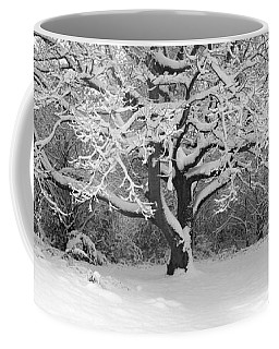 Snow Dusted Tree Coffee Mug