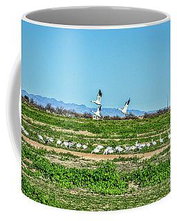 Snow Geese Feeding Coffee Mug