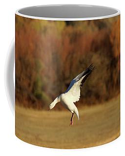 Snow Goose Elegance Coffee Mug