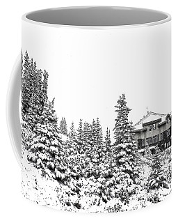 Coffee Mug featuring the photograph Snow In July 2 by Teresa Zieba