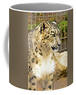 Coffee Mug featuring the photograph Snow Leopard 1 by Ayasha Loya
