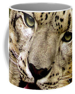 Coffee Mug featuring the photograph Snow Leopard 2  by Ayasha Loya