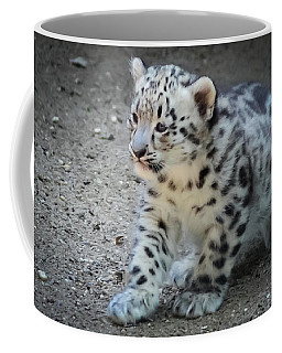 Snow Leopard Cub Coffee Mug