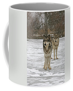 Coffee Mug featuring the photograph Snow Mates by Shari Jardina