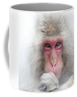 Coffee Mug featuring the photograph Snow Monkey Consideration by Rikk Flohr