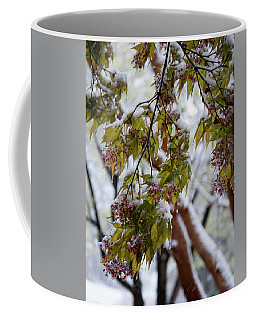 Coffee Mug featuring the photograph snow on the Cherry blossoms by Chris Flees