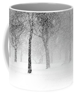 Snow Storm At Starved Rock Coffee Mug
