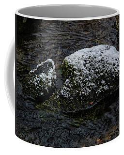 Snow Strikes The Moss Coffee Mug