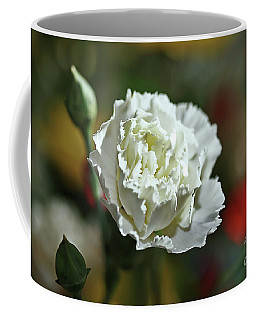 Coffee Mug featuring the photograph Snow White by Stephen Mitchell