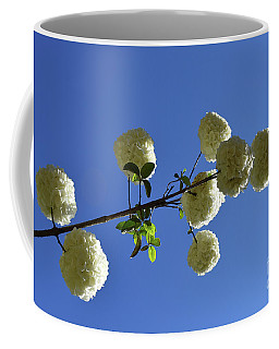 Coffee Mug featuring the photograph Snowballs On A Stick by Skip Willits