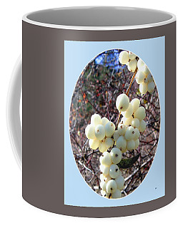 Coffee Mug featuring the photograph Snowberry Cluster by Will Borden
