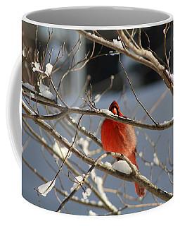 Snowbird Coffee Mug