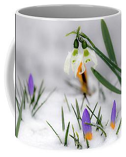 Snowdrops And Crocus Coffee Mug