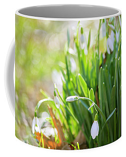 Coffee Mug featuring the photograph Snowdrops by Rima Biswas