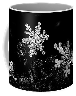 Snowflake Beauty Coffee Mug