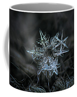Coffee Mug featuring the photograph Snowflake Of 19 March 2013 by Alexey Kljatov