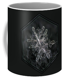 Snowflake Photo - January 18 2013 Grey Colors Coffee Mug